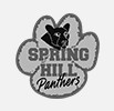 Spring Hill Partners